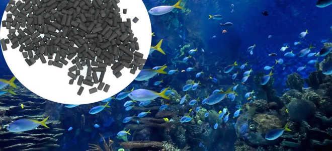 Активированный уголь для очистки аквариумной воды
