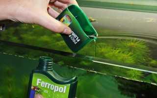 Как подобрать удобрения для аквариума