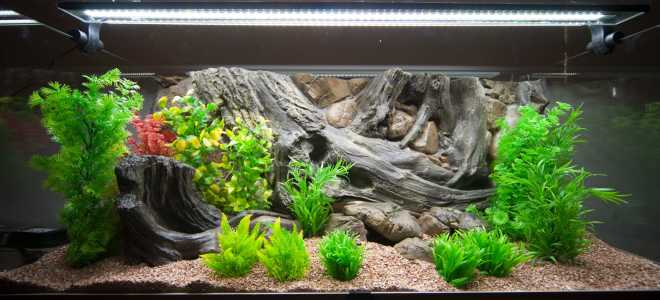 Фон для аквариума: как наклеить плёнку