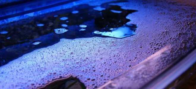 Почему пенится вода в аквариуме и что с этим делать?