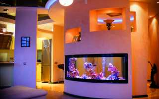 Встроенные аквариумы: разновидности и рекомендации по оформлению