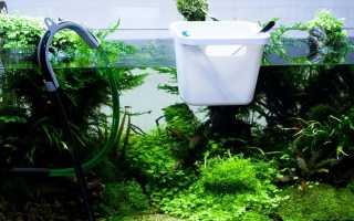 Сколько и как нужно отстаивать воду для аквариума