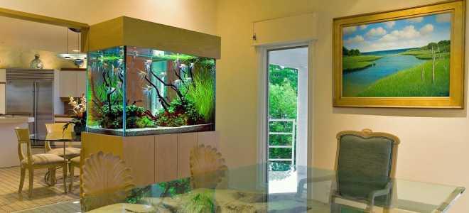 Куда поставить аквариум по фен шуй в квартире?