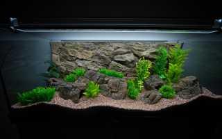 Какие камни подойдут для аквариума