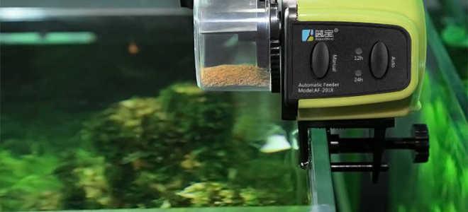Как выбрать автокормушку для рыб
