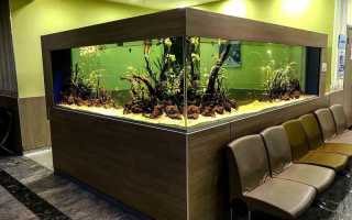 Красивый дизайн аквариума своими руками